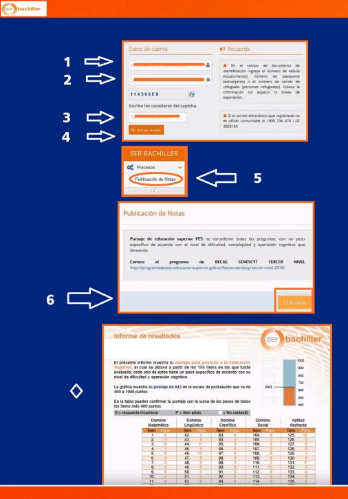 infografia consulta de notas ser bachiller